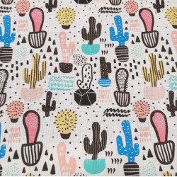 Cotton Cactus and Geometry