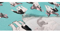 Cotton Dogs Glasses fabric - Funny cotton fabric with drawings of dogs with pink glasses on a turquoise background. The fabric is 140cm wide and its composition is 100% cotton.