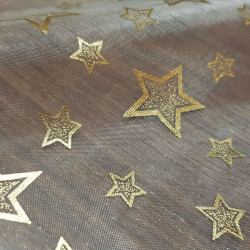 Organza Stars Golden Rim