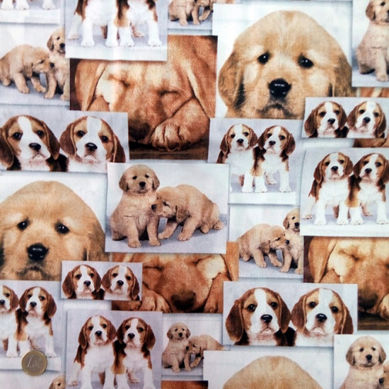 Cotton Pictures Puppies Collage fabric - 100% Cotton Patchwork fabric with puppies collage photos.