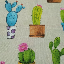 Canvas Cactus Pots